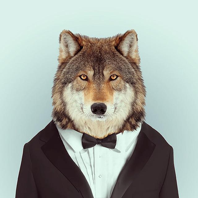 Fashion-Zoo-Animals26